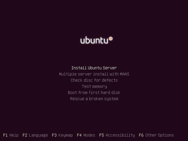 Choose whether to install Ubuntu Server.